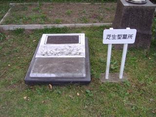 芝生型墓所サンプル