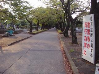緑ヶ丘霊園04