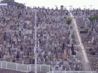 三ツ沢墓地04