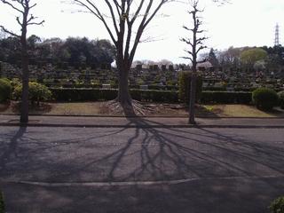 大庭台霊園08